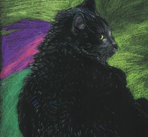 Kot zielony